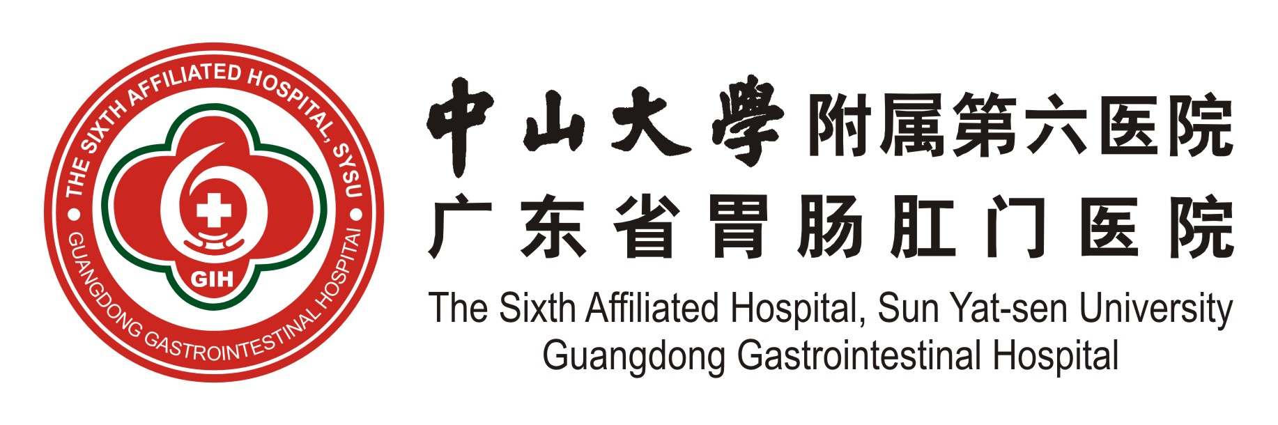 The Sixth Affiliated Hospital, Sun Yat-sen University